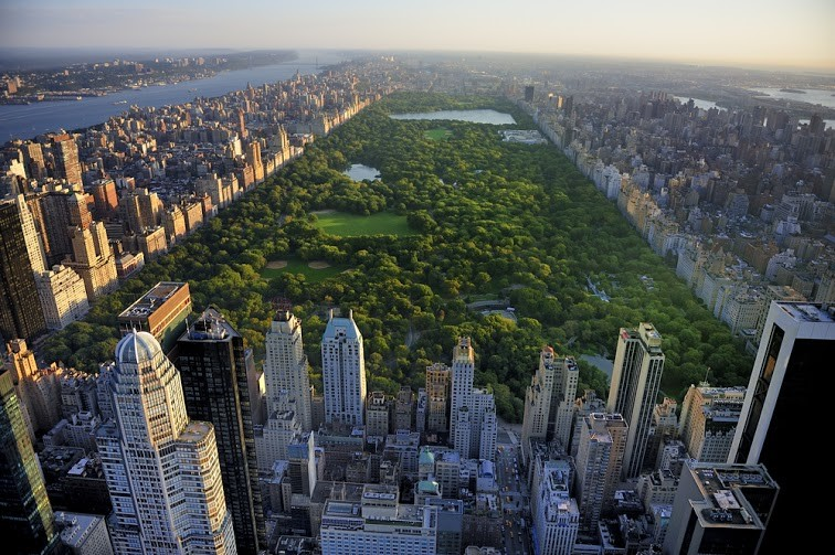 New York City and New Jersey: Which is Safer for Your Family?